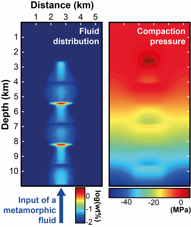 Numerical simulation of fluid flow
